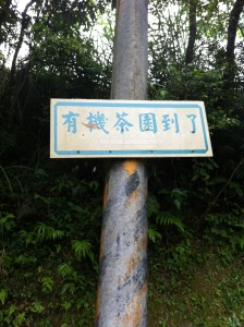 "This sign reads, ""You've arrived at the organic tea farm"".  I saw this sign when I got lost, before finding SWS. While there are many tea farms around Pinglin in general, there is also a relatively high concentration of organic tea farms as well, due to the proximity to the Feisui reservoir."