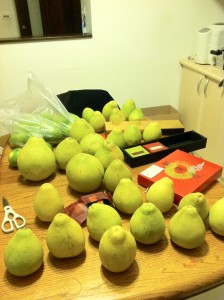 A pile of pomelos that have been given to the family I'm staying with