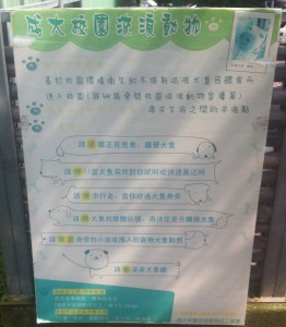 "A sign on the NCKU campus from the animal protection group about how to handle the stray dogs on the campus. (""Please read the dog's body language before you decide to pet it."")"
